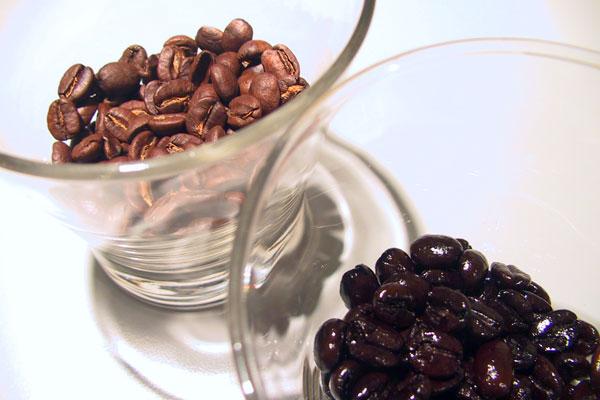 cafegeek [canada]