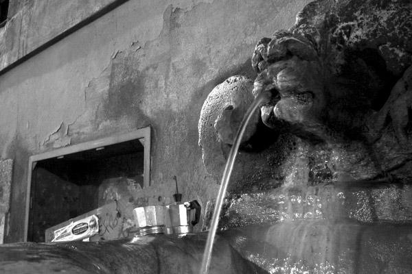 antmoose [fountain of the monte di pieta]
