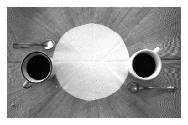 korova_milk_bar [ready to drink]