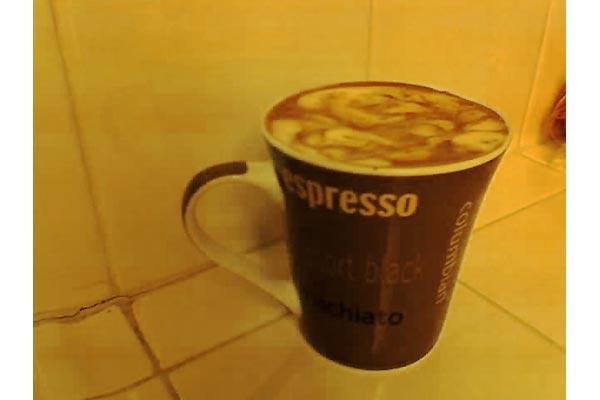 hollycoffeebean [espressocream]