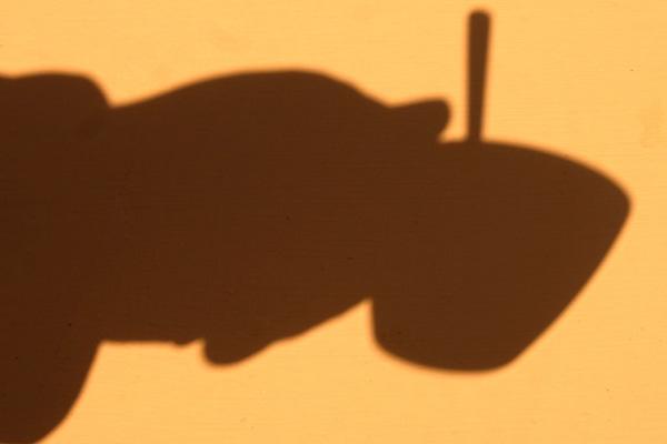 steffe [coffee shadow]