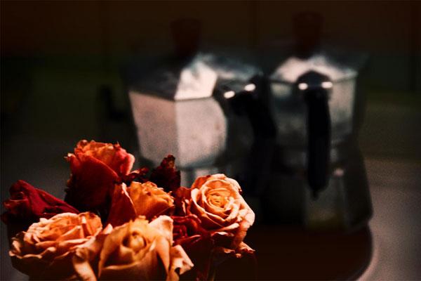 moto browniano [ rose e caffettiere ]