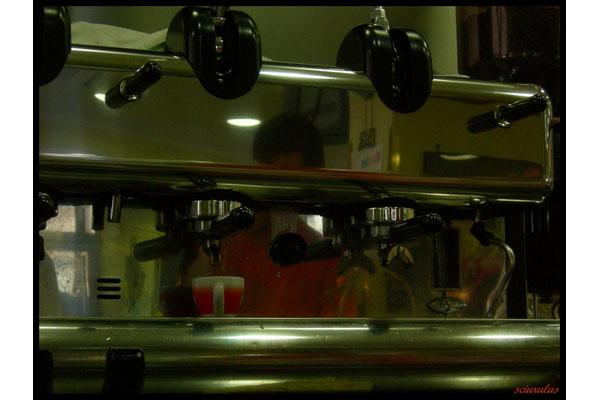sciurulus [ orange coffee ]