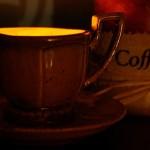 sciurulus [ light smells like coffee ]