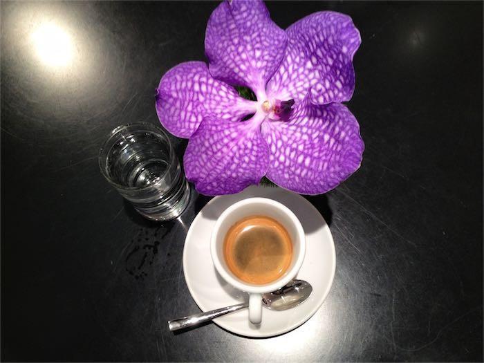 caffe-293