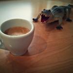 Coffee and alligators