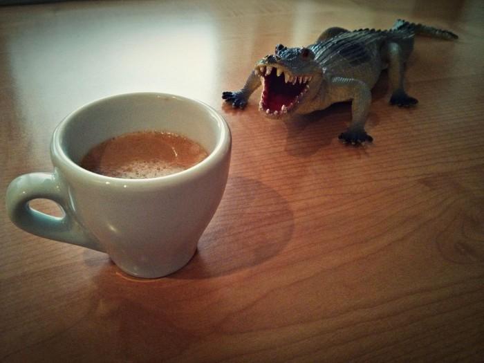 Coffee and alligators - Simona che ore sono