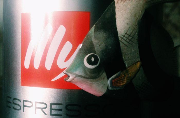 IMG_3801-pesce-daprile