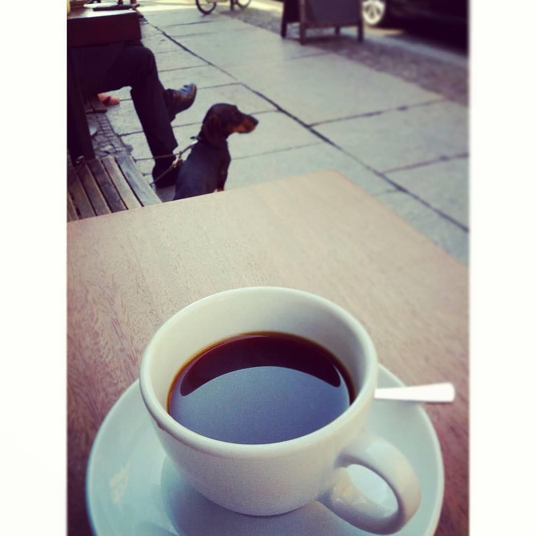 Happy morning coffee, friends! | @hypnoticaubergine