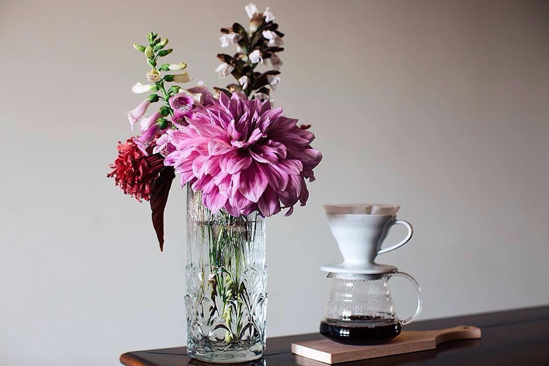 Dahlia and Coffee | ph @vincos