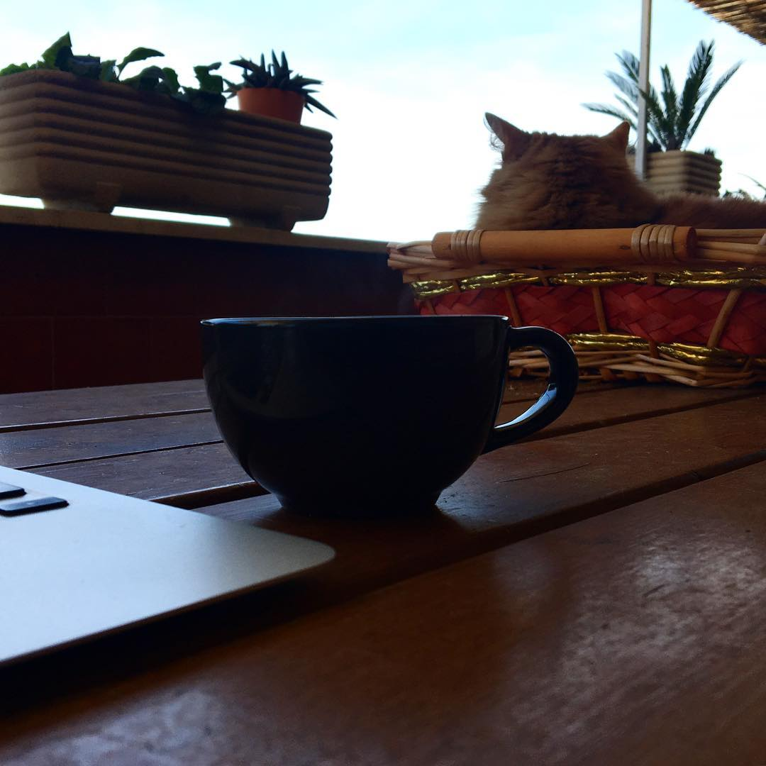 OttobrateRomane cafexperiment