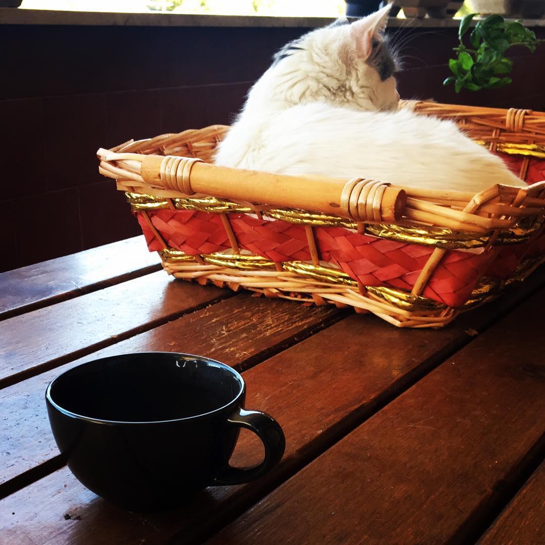 Un secondo caff