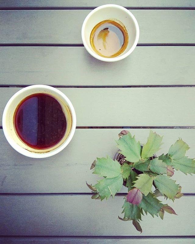 Coffee in Berlin | ph @hypnoticaubergine
