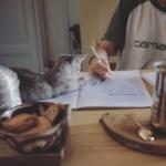 """""""Sarà mica possibile studiare così?   @mayastarlavi"""